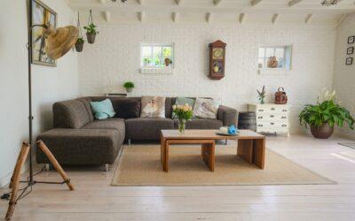 Et hjem med plads til dig og din hund